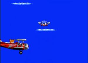 Quantas vezes eu preciso dizer que ouriços não voam, Sonic?
